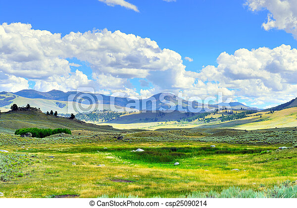 Lamar Valley in Yellowstone National Park, Wyoming in summer - csp25090214