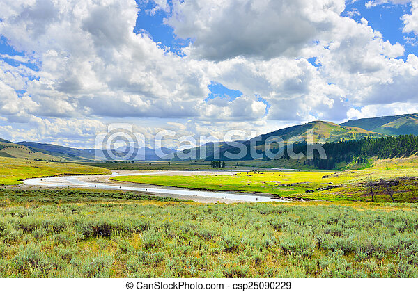 Lamar Valley in Yellowstone National Park, Wyoming in summer - csp25090229