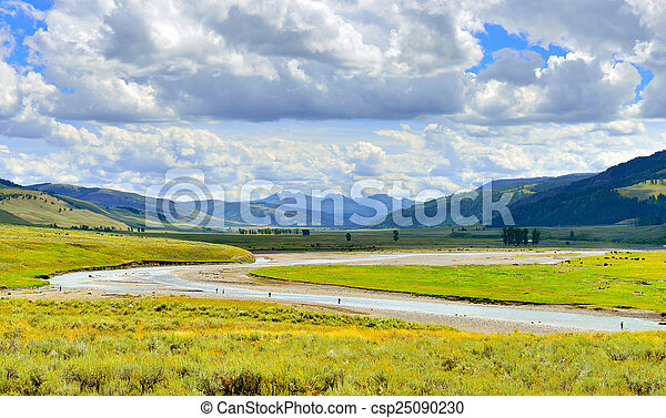 Lamar Valley in Yellowstone National Park, Wyoming in summer - csp25090230