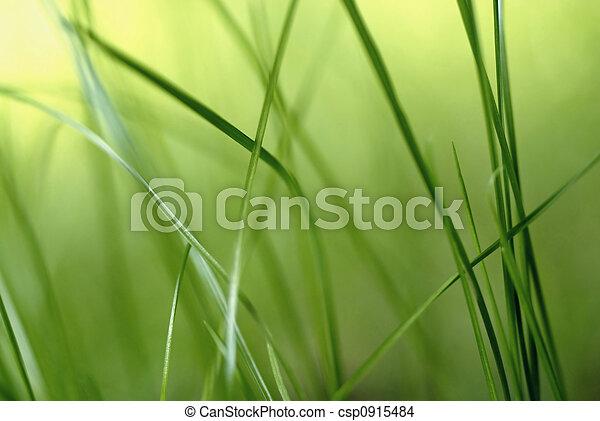 lame, herbe - csp0915484