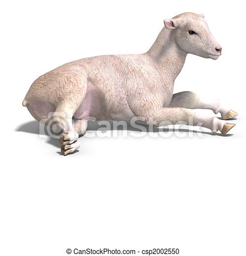 Ausgezeichnet Kleines Lamm Färbung Seite Zeitgenössisch ...