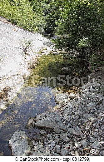Lamone River - csp10812799