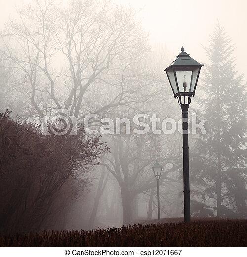 lampada, nebbia, parco, strada, foresta - csp12071667