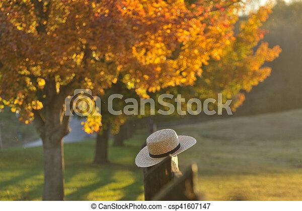 lancaster, pensilvânia, noite, nebuloso, outono - csp41607147