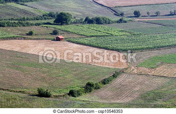 landelijk landschap - csp10546353