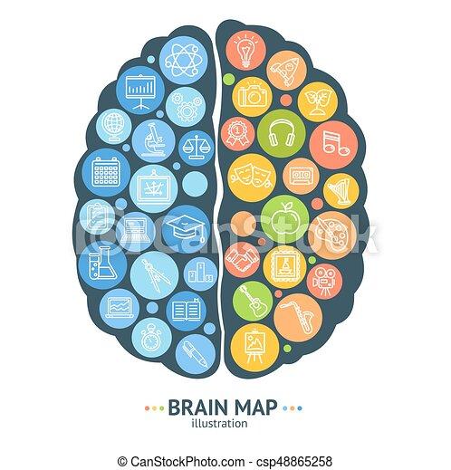 Pin Von Valentina David Auf Kids Gehirn Aufbau Gehirn Aufbau
