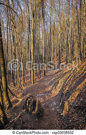 Landscape Bavaria Alps - csp33038552
