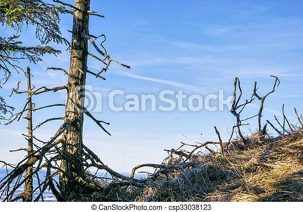 Landscape Bavaria Alps - csp33038123