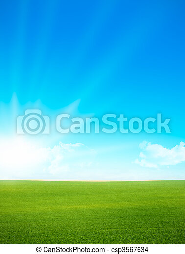 Landscape - green field, blue sky - csp3567634