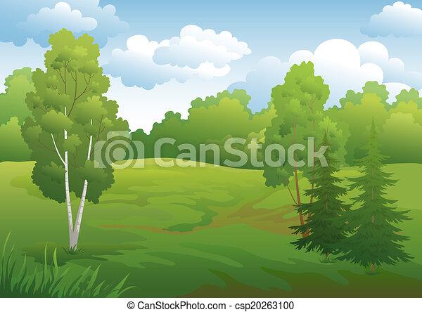 Landscape, green summer forest - csp20263100