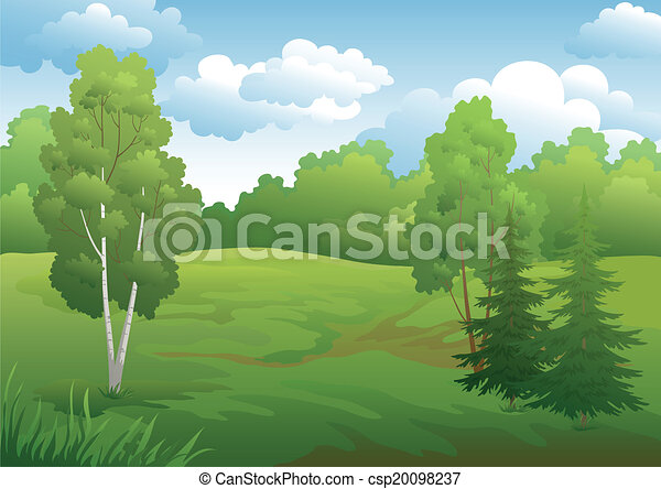 Landscape, green summer forest - csp20098237