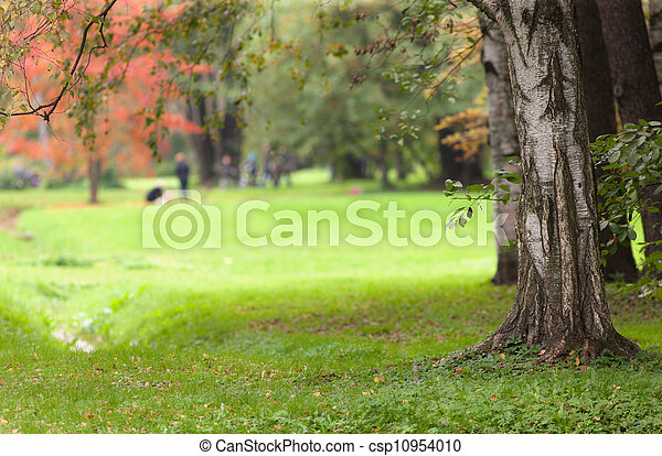 landscape in autumn park - csp10954010