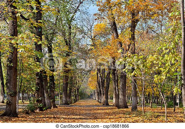landscape in autumn park - csp18681866