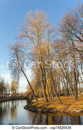 landscape in autumn park - csp74826439