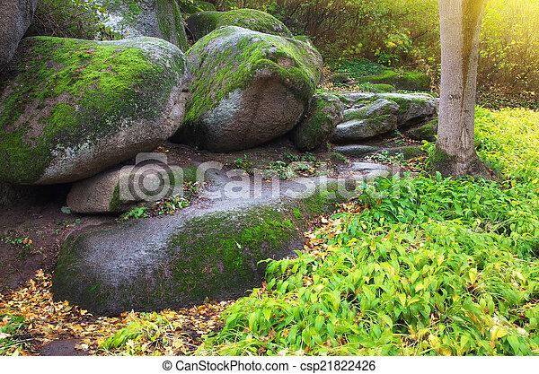 Landscape in park - csp21822426
