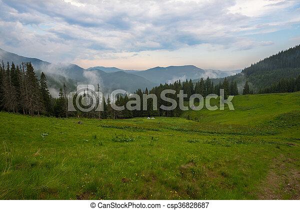 Landscape in the Carpathian mountains - csp36828687