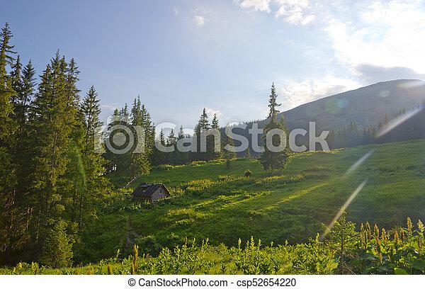 Landscape in the Carpathian mountains - csp52654220