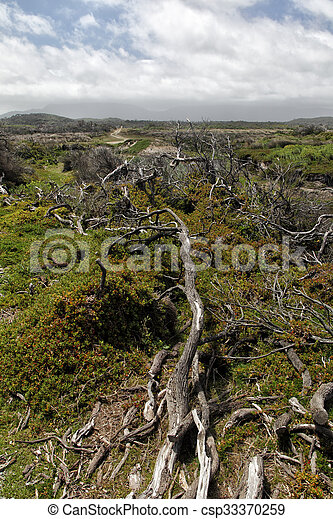 Landscape in the Wilsons Promontory National Park - csp33370259