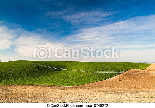 Landscape in the wine region - csp10749272