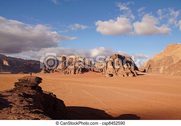 Landscape in Wadi Rum desert - csp8452590