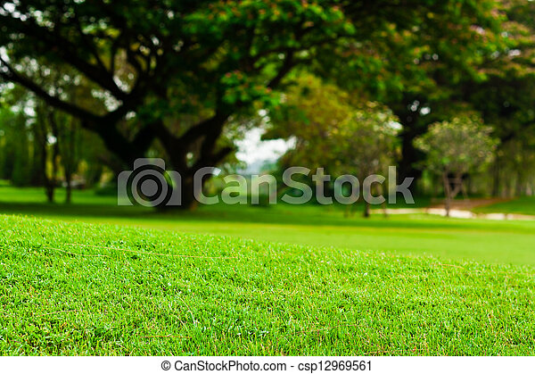 Landscape of a green field  - csp12969561