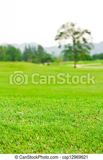 Landscape of a green field  - csp12969621