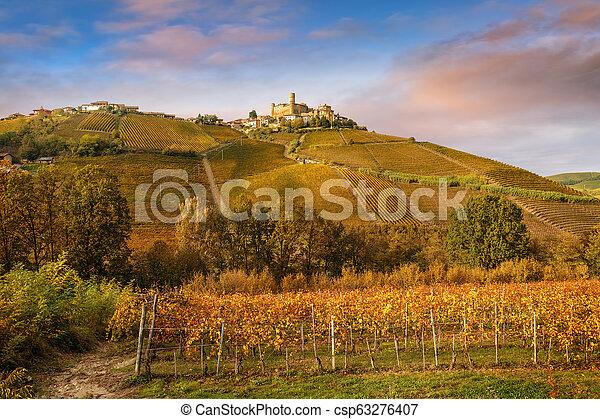 Landscape of Barolo wine region - csp63276407