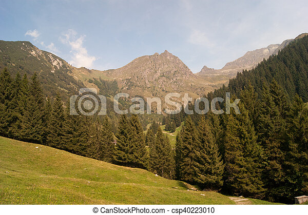 Landscape of mountain alps - csp40223010