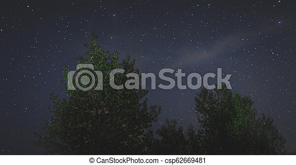 landscape of the night sky silhouettes of trees - csp62669481