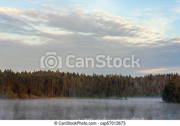 landscape on a forest lake - csp57012673