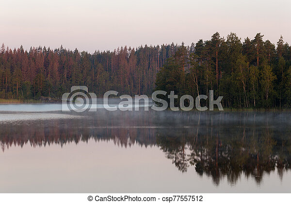 landscape on a forest lake - csp77557512