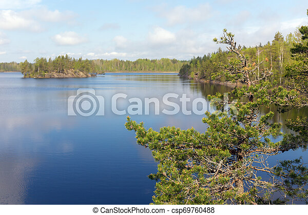 landscape on a forest lake - csp69760488