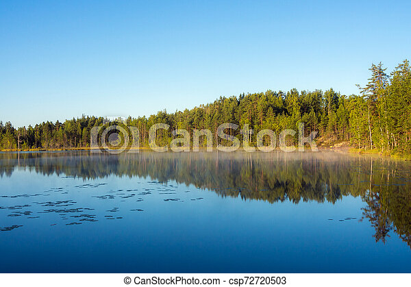landscape on a forest lake - csp72720503