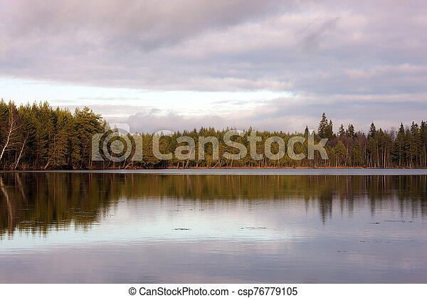 landscape on a forest lake - csp76779105