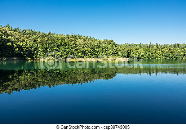 Landscape on a lake with trees - csp39743005