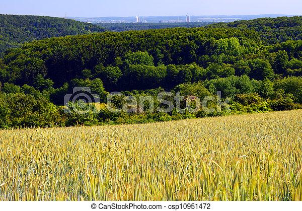 Landscape - csp10951472