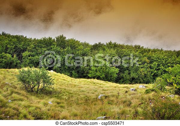 Landscape - csp5503471