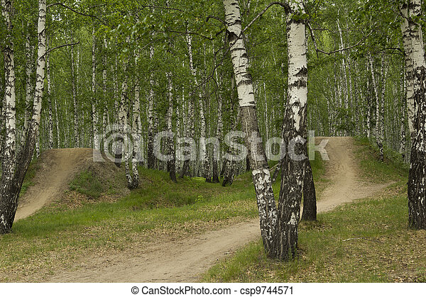 Landscape - csp9744571