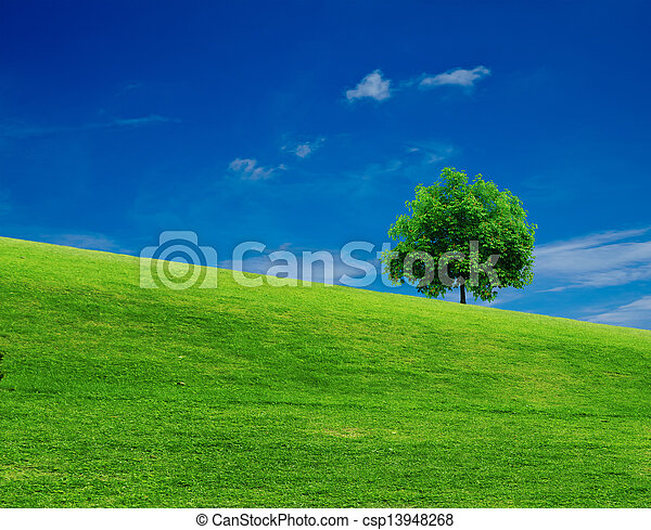 landscape - csp13948268