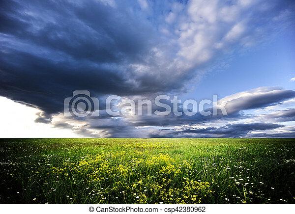 landscape - csp42380962