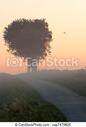 landscape - csp7479825