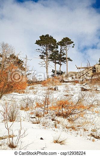 landscape - csp12938224