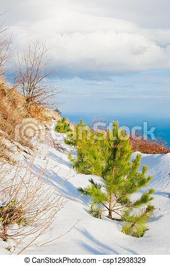 landscape - csp12938329