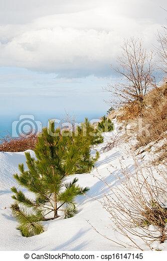 landscape - csp16147145