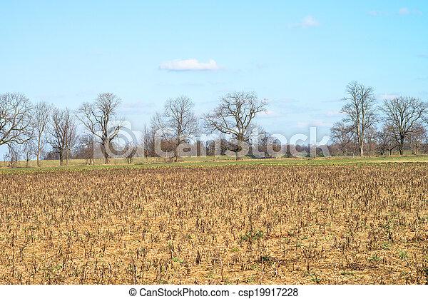 Landscape - csp19917228