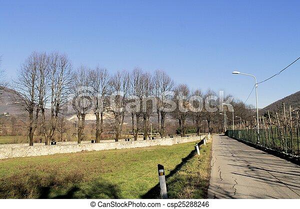 landscape - csp25288246