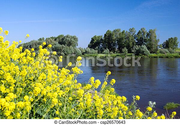 Landscape - csp26570643