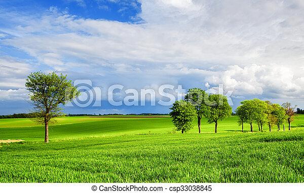 Landscape - csp33038845