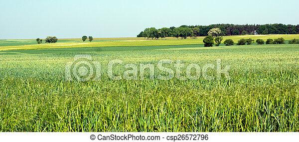 Landscape - csp26572796