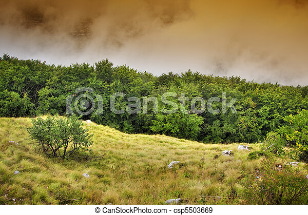 Landscape - csp5503669